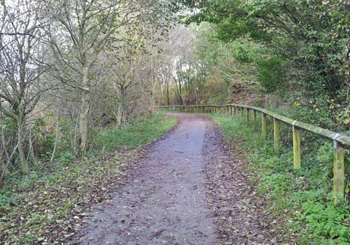 Stanley Park area - the track to Marton Mere